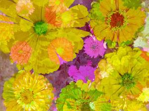 Different Summer Blossoms in Yellow Orange and Pink Tones by Alaya Gadeh