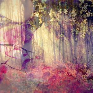 Dreamy and Fairy Photographic Layer Work of an Autumn Forest by Alaya Gadeh