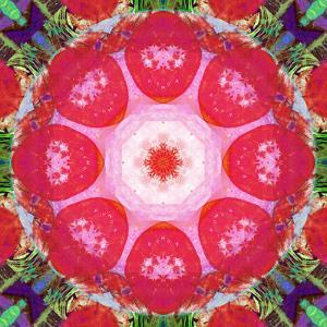 Mandala, 'Blossom Magic' by Alaya Gadeh