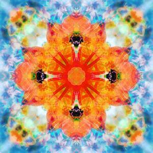 Mandala from Flower Photographs by Alaya Gadeh