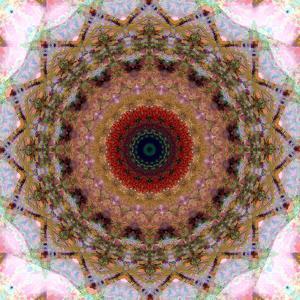 Mandala from Flowers by Alaya Gadeh