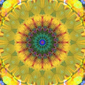Mandala Ornament from Flower Photographs, Conceptual Layer Work by Alaya Gadeh