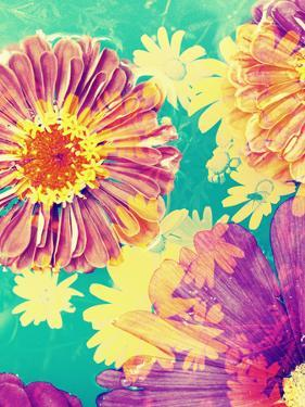 Multicolor Blossom Design, Photographic Layer Work by Alaya Gadeh