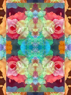 Ornament from Flower Photographs, Multicolor Layer Artwork by Alaya Gadeh