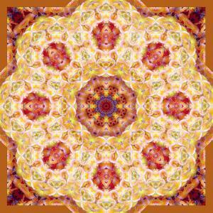 Ornament from Orchids in Warm Colors by Alaya Gadeh