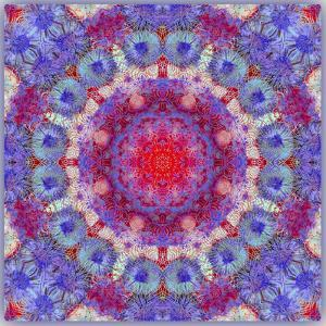 Ornamental Blossoms Mandala by Alaya Gadeh