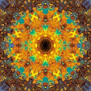 Photographic Kaleidoscope from Flower Images by Alaya Gadeh
