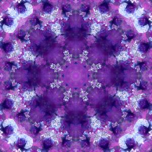 Photographic Mandala Ornament in Purple Tones by Alaya Gadeh