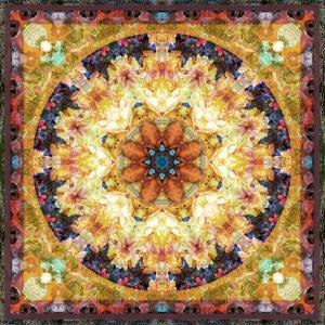 Photomontage of Flowers and Textures in a Symmetrical Ornament, Mandala by Alaya Gadeh