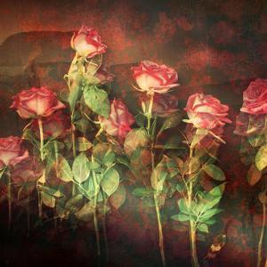 Pink Roses with Textures and Floral Ornaments by Alaya Gadeh