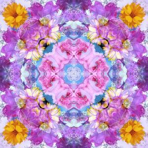 Purple Flower Mandala by Alaya Gadeh