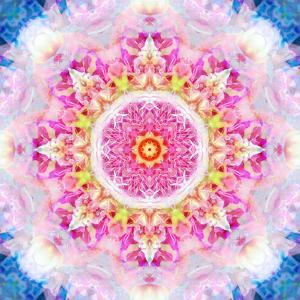 Rose Mandala Ornament by Alaya Gadeh