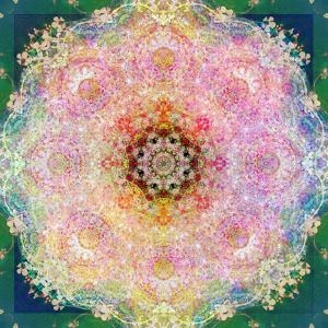 Symmetric Ornament from Flower Photographs by Alaya Gadeh