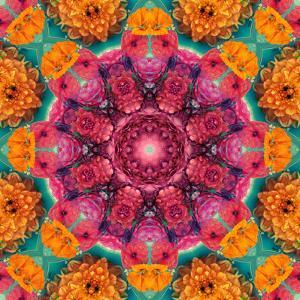 Symmetric Ornament from Flowers, Photographic Layer Work by Alaya Gadeh