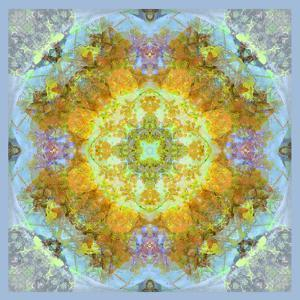 Symmetrical Ornaments, Mandala, Colourful by Alaya Gadeh