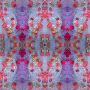 Symmetrical Photomontage of Red Roses and Floral Ornaments by Alaya Gadeh