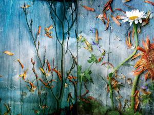 Underwater Sky by Alaya Gadeh