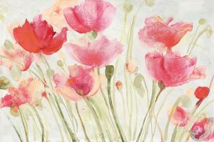 Blush Poppies by Albena Hristova