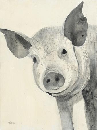 Oink by Albena Hristova