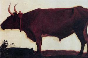 Albert Bierstadt Ox Portrait by Albert Beirstadt