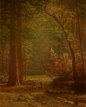 Dogwood by Albert Bierstadt
