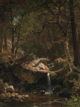 Mountain Brook, 1863 by Albert Bierstadt