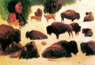 Albert Bierstadt Study of Buffaloes Art Print Poster
