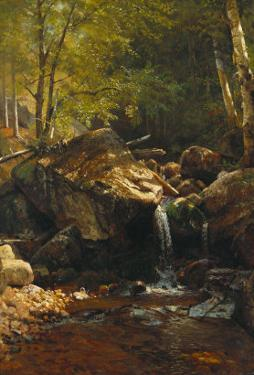 Thompson Cascade, White Mountains by Albert Bierstadt