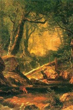 White Mountains, New Hampshire by Albert Bierstadt