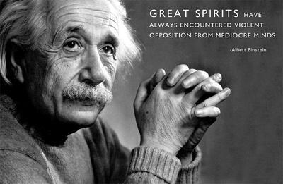 Albert Einstein Great Minds Motivational Poster