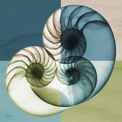 Aqua Filter 4 by Albert Koetsier