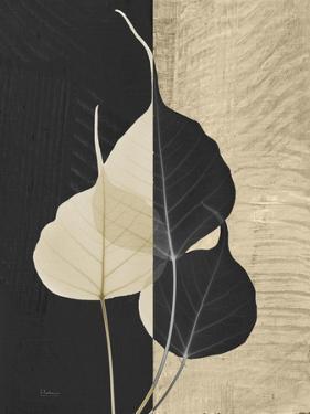 Bo Tree Invert by Albert Koetsier