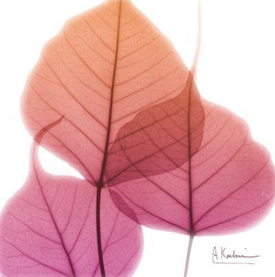 Bo Tree by Albert Koetsier