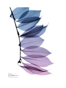 Camelia Leaf in Purp by Albert Koetsier