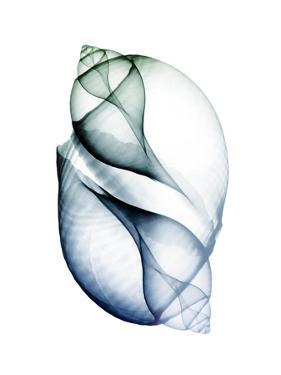 Crystal Breeze 1 by Albert Koetsier