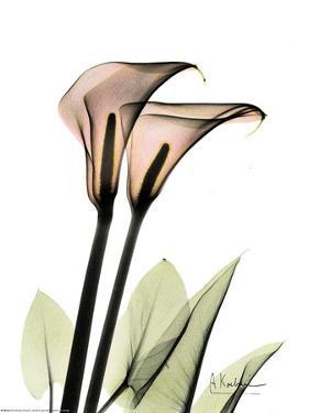 Crystal Flowers, Lily Pair by Albert Koetsier