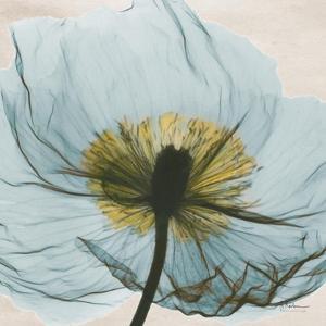 Dream in Pale Blue by Albert Koetsier