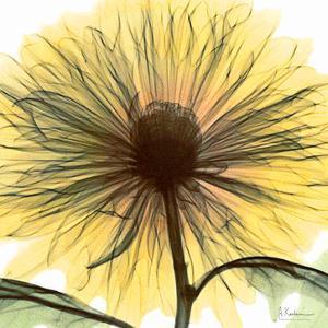 Dream in Yellow by Albert Koetsier