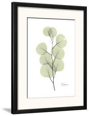 Eucalyptus in Pale Green by Albert Koetsier