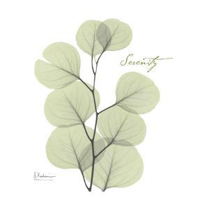Eucalyptus Serenity by Albert Koetsier