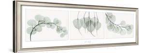 Evergreen Triptych by Albert Koetsier