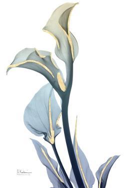 Gold Splash Calla Lily by Albert Koetsier