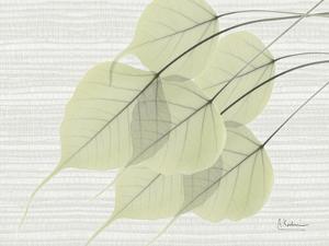 Grasscloth BoTree by Albert Koetsier