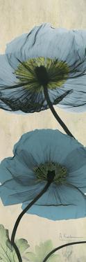 Iceland Poppy Moments by Albert Koetsier