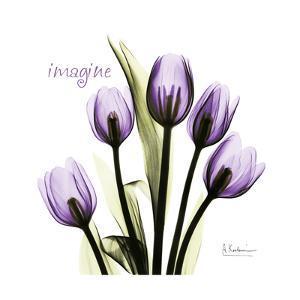 Imagine Tulips by Albert Koetsier