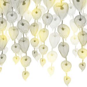 Lit Lantern Cascade 1 by Albert Koetsier