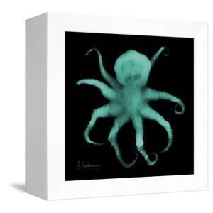 Luminous Octopus by Albert Koetsier