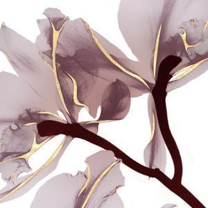 Luscious Bouquet 2 by Albert Koetsier