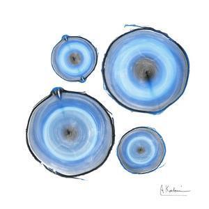 Mineral Rings 1 by Albert Koetsier