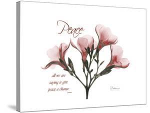 Oleander Peace by Albert Koetsier